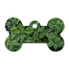Texture Leaves Light Sun Green Dog Tag Bone (One Side)