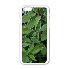 Texture Leaves Light Sun Green Apple iPhone 6/6S White Enamel Case