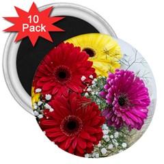 Flowers Gerbera Floral Spring 3  Magnets (10 pack)