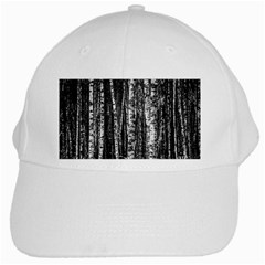 Birch Forest Trees Wood Natural White Cap