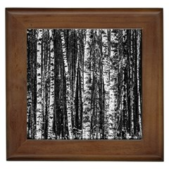 Birch Forest Trees Wood Natural Framed Tiles
