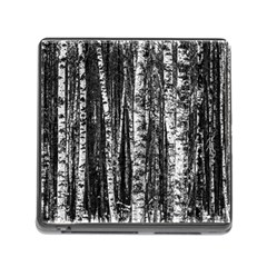 Birch Forest Trees Wood Natural Memory Card Reader (Square)