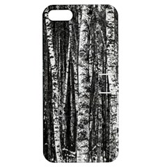 Birch Forest Trees Wood Natural Apple iPhone 5 Hardshell Case with Stand