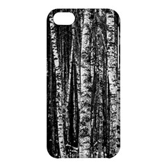 Birch Forest Trees Wood Natural Apple iPhone 5C Hardshell Case