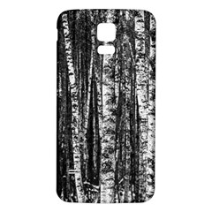 Birch Forest Trees Wood Natural Samsung Galaxy S5 Back Case (White)