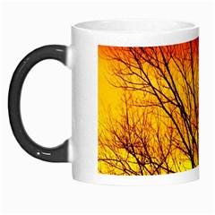 Sunset Abendstimmung Morph Mugs