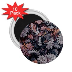Leaf Leaves Autumn Fall Brown 2.25  Magnets (10 pack)