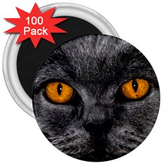 Cat Eyes Background Image Hypnosis 3  Magnets (100 pack)