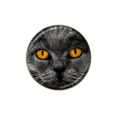 Cat Eyes Background Image Hypnosis Hat Clip Ball Marker (4 pack)