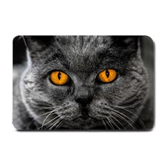 Cat Eyes Background Image Hypnosis Small Doormat