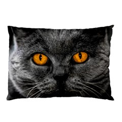 Cat Eyes Background Image Hypnosis Pillow Case