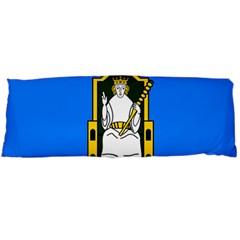 Flag of Mide Body Pillow Case (Dakimakura)