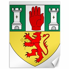 County Antrim Coat of Arms Canvas 36  x 48