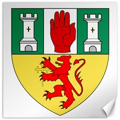County Antrim Coat of Arms Canvas 12  x 12