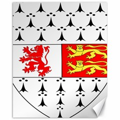 County Carlow Coat of Arms Canvas 16  x 20