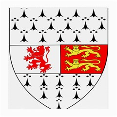 County Carlow Coat of Arms Medium Glasses Cloth