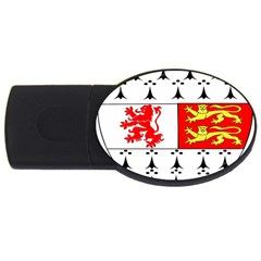 County Carlow Coat of Arms USB Flash Drive Oval (2 GB)