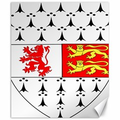 County Carlow Coat of Arms Canvas 20  x 24