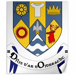 County Clare Coat of Arms Canvas 20  x 24