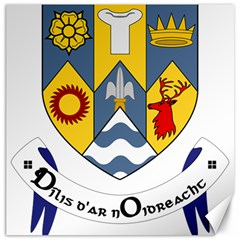 County Clare Coat of Arms Canvas 20  x 20