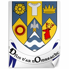 County Clare Coat Of Arms Canvas 18  X 24