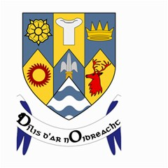 County Clare Coat of Arms Small Garden Flag (Two Sides)