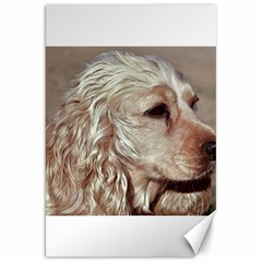 Golden Cocker spaniel Canvas 20  x 30