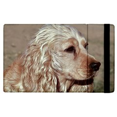 Golden Cocker spaniel Apple iPad 2 Flip Case