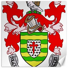 County Donegal Coat of Arms Canvas 12  x 12