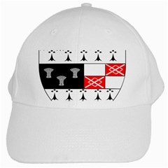 County Kilkenny Coat of Arms White Cap