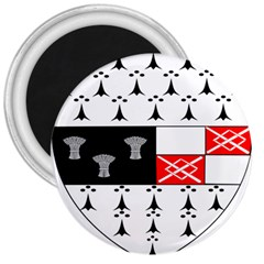 County Kilkenny Coat of Arms 3  Magnets