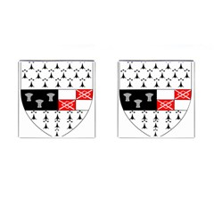 County Kilkenny Coat of Arms Cufflinks (Square)