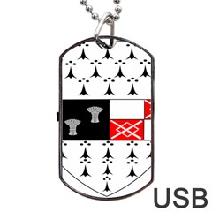County Kilkenny Coat of Arms Dog Tag USB Flash (One Side)