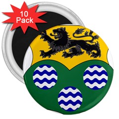 County Leitrim Coat of Arms 3  Magnets (10 pack)