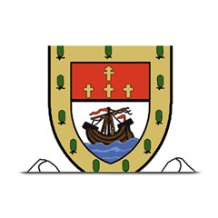 County Mayo Coat of Arms Plate Mats
