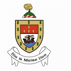 County Mayo Coat of Arms Large Garden Flag (Two Sides)