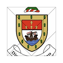 County Mayo Coat of Arms Acrylic Tangram Puzzle (6  x 6 )