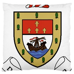 County Mayo Coat of Arms Large Cushion Case (One Side)