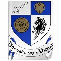 County Monaghan Coat of Arms  Canvas 36  x 48