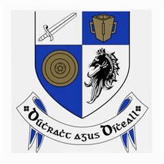 County Monaghan Coat of Arms Medium Glasses Cloth (2-Side)