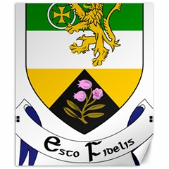 County Offaly Coat of Arms  Canvas 20  x 24