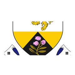 County Offaly Coat of Arms  Satin Wrap