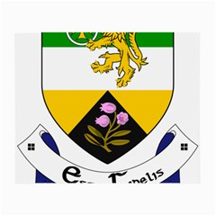 County Offaly Coat of Arms  Small Glasses Cloth