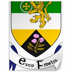 County Offaly Coat of Arms  Canvas 12  x 16