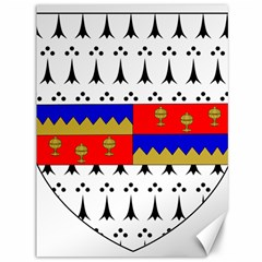 County Tipperary Coat of Arms  Canvas 36  x 48
