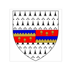 County Tipperary Coat of Arms  Small Satin Scarf (Square)