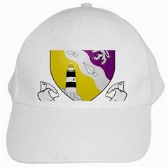 County Wexford Coat of Arms  White Cap