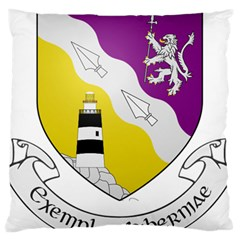 County Wexford Coat of Arms  Standard Flano Cushion Case (Two Sides)