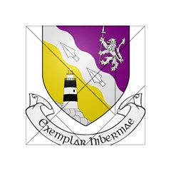 County Wexford Coat of Arms  Acrylic Tangram Puzzle (4  x 4 )