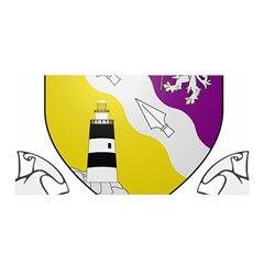 County Wexford Coat of Arms  Satin Wrap